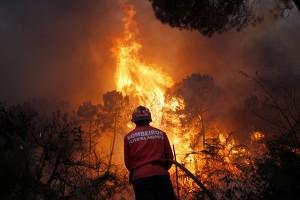 Incendio cerca de Caramulo (Viseu). Agosto 2013 | © Francisco Seco
