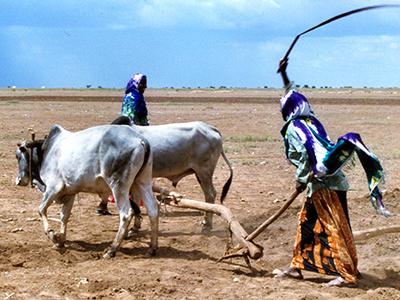 Campesinas somalíes en el sureste de Etiopía (2006) © Ilya U. Topper
