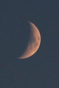 Luna |  |   © I.U.T. / M'Sur