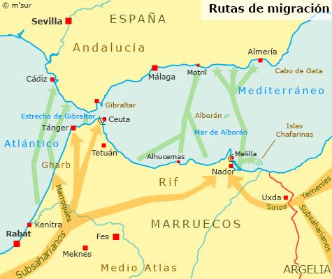 migracion alboran